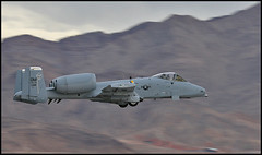 A10 (black_z) Tags: warthog a10 nellis a10warthog aviationnation