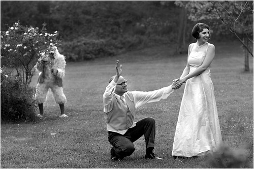 Funny Wedding Pictures. Funny Wedding Photo