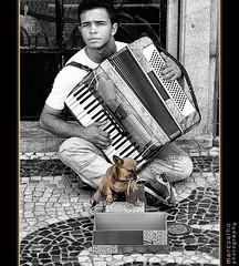 Uma moeda por favor... (one coin please...) (Marco_Coelho) Tags: co portugal lisboa ruaaugusta pedinte calada rapaz blackwhitephotos ilustrarportugal