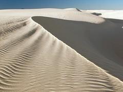 Sculpture II (rovingmagpie) Tags: white newmexico topf25 sand hiking whitesands dunes dune trail alamogordo whitesandsnationalmonument diamondclassphotographer alkaliflattrail awardflickrbest