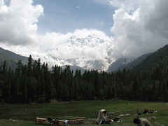 Fairy Meadow (Faisal.Saeed) Tags: pakistan mountains meadow peak faisal fairymeadow nangaparbat northernareaofpakistan faisalsaeed