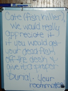 Cate (fish killer),  We would really appreciate it if you would get your dead fish off the desk + give it a proper burial. Your roommates!