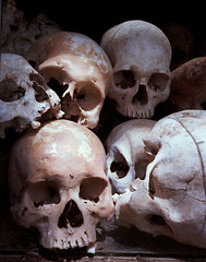 Killing Fields Skulls (jssutt) Tags: submitted cambodia genocide victims killingfields phenompenh khmerrouge polpot toulsleng 5photosaday humanskulls earthasia jssutt jeffsuttlemyre