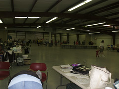 Flyball St George