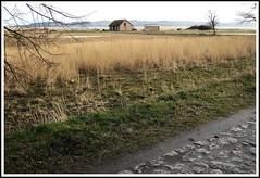 House (Anke L) Tags: sea building water germany landscape island meadow baltic f30 gras rgen 2008 bodden mecklenburgvorpommern mnchgut middelhagen