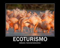 Cuna de Ecoturismo
