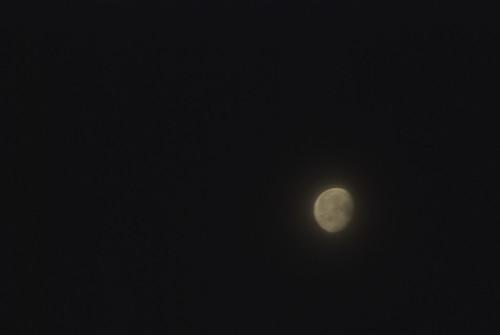 20080524夜明け月