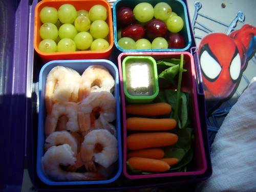 Laptop Lunch #5