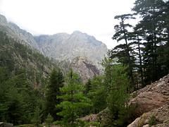 Remontée de la Cavichja et de Ghjarghje Rosse (la Combe Rouge) avec vue du Monte Saltare