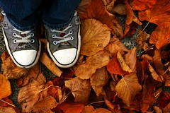 Fall of Converse (Little Lioness) Tags: autumn orange fall feet leaves shoes down sidewalk converse sidewalks fallenleaves converseallstar downcast