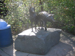 Wolves Sculpture at the Minnesota Zoo