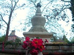 Stupa courtyard 8