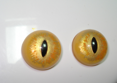 glass eyes painted
