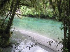 IMG_4279 (kenorrha) Tags: newzealand nzsouthisland scenicsnotjustlandscapes