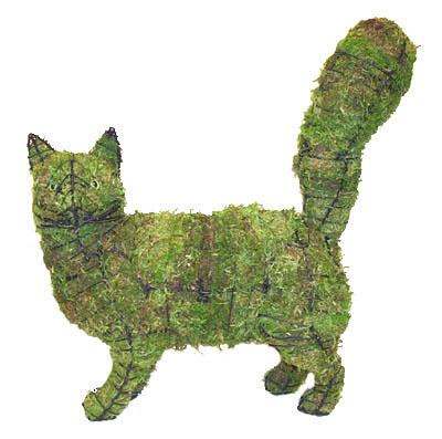Kittie Hedges