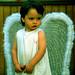 angel bello