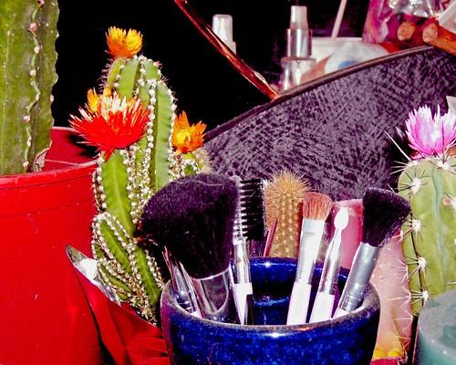 Bristles & Brushes