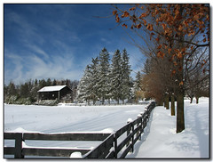 Snowy Barn (Lisa-S) Tags: trees winter sky white snow ontario canada barn rural canon fence lisas explore soe allrightsreserved caledon interestingness189 i500 7328 s3is canons3is mywinners infinestyle diamondclassphotographer flickrdiamond thegardenofzen topqualityphotos copyrightlisastokes