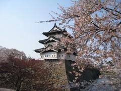 IMG_0187.JPG (uchida.u) Tags: hirosaki