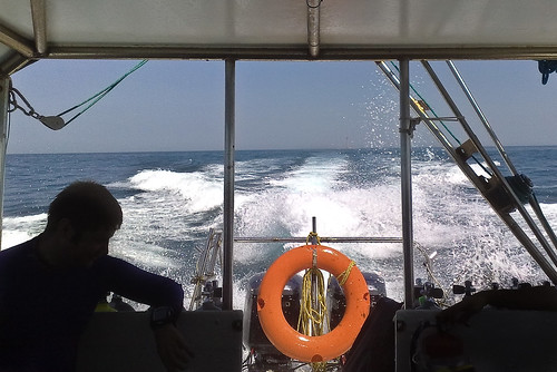Returning from diving at Qaruh