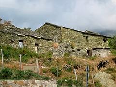 Maisons d'Olcani