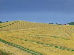 Nach der Ernte (dirkgue) Tags: feld himmel gelb landschaft danmark nordsee ostsee bauernhof acryl ernte malerei norddeutschland leinwand gemlde realismus stoppelfeld realistisch dirkgnther