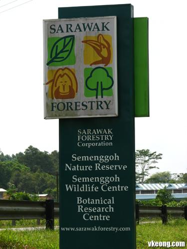 sarawak-forestry