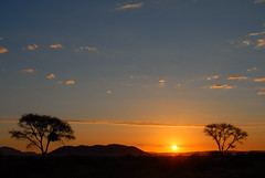 Sunset on savanna (teocaramel) Tags: sunset namibia etosha coucherdesoleil savanna namibie naturesfinest jpb savane supershot abigfave aplusphoto superbmasterpiece diamondclassphotographer colourartaward goldstaraward
