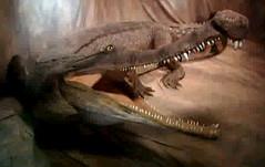 Sarcosuchus smiles to the camera