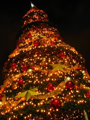 rbol de Navidad de Cemaco (Rudy A. Girn) Tags: tree night lights luces guatemala christmastree antigua rbol antiguaguatemala rboldenavidad cemaco laantiguaguatemala advertiseenlagdp