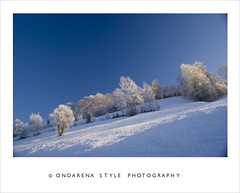 Frosty day ... (G.Hotz Photography (busy as a bee =)) Tags: schnee autumn winter summer mountain lake snow alps macro art ice nature berg austria photo dornbirn feldkirch sterreich spring frost foto fotograf fotografie sommer kunst sony herbst natur hard picture bregenz frosty tourist hobby gerald photograph photoraphy tele 100 alpha bodensee eis soe constance wandern tourismus bludenz frhling fruehling oesterreich vorarlberg markro bregenzerwald hotz mywinners abigfave aplusphoto diamondclassphotographer bersteigen flickrgolfclub ondarena