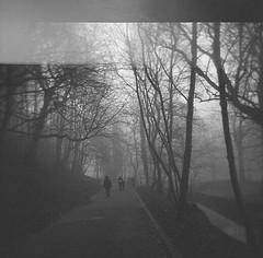grey (slithy-toves) Tags: morning 120 film misty fog mediumformat holga path glasgow oops walkers kelvinbridge