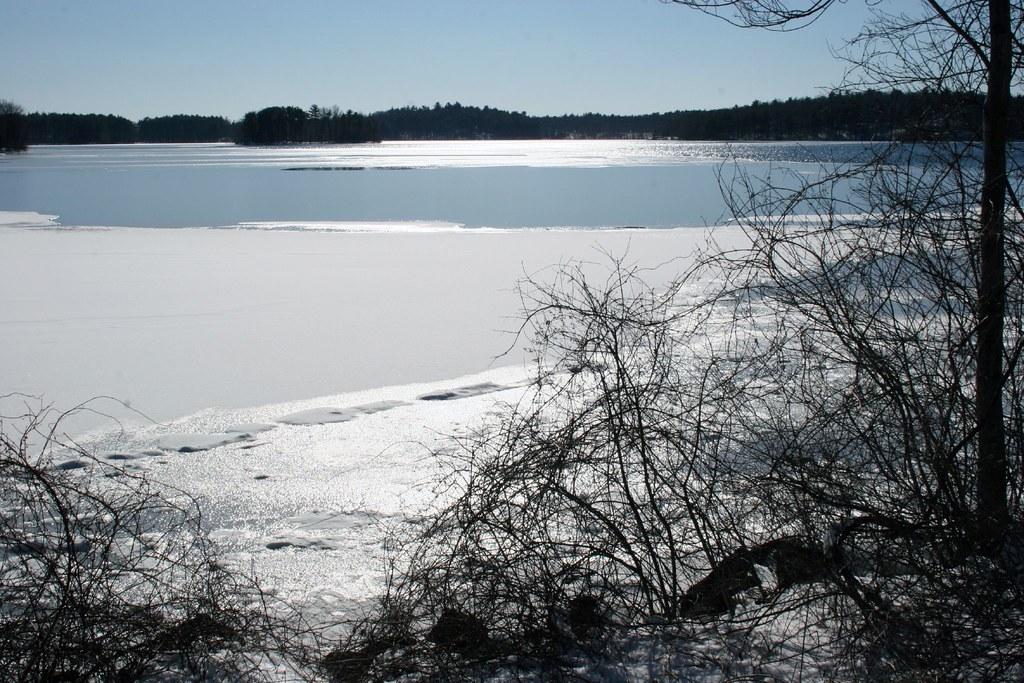 Lake Better View