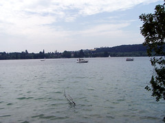 04 Insel Mainau 25 (ruflo) Tags: dornbirn bodensee rheinfall mainau schlosslaufen