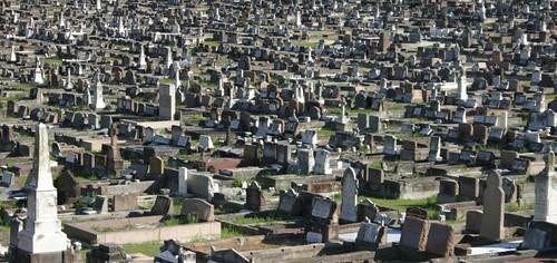 Suburbian Sydney cemetery.