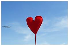 .Love.Is.In.The.Air. (MiracleGirl) Tags: love is heart air miraclegirl galb