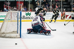 "Nailers_Wings_2-18-17-72 • <a style=""font-size:0.8em;"" href=""http://www.flickr.com/photos/134016632@N02/32143969074/"" target=""_blank"">View on Flickr</a>"