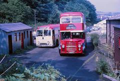 Highland Omnibuses AL22 GL7 Dingwall Depot (Guy Arab UF) Tags: bus guy buses highland arab depot alexander northern albion counties lowlander lr1 dingwall rossshire luf omnibuses centralsmt westernsmt gl7 fgm22 al22 fsd470