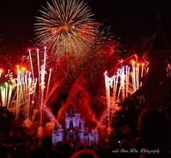 Magic Kingdom (wdwSteve) Tags: magic kingdom disneyworld 18200mm nikond90
