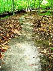 New Patapsco trail
