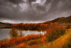 Oxbow (jhawkcurt) Tags: park grand national teton