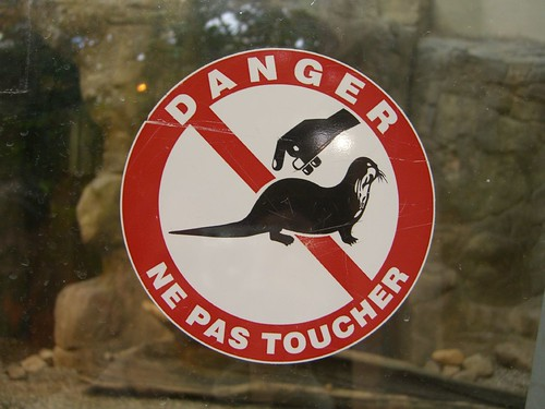 Ne Pas Toucher the otters