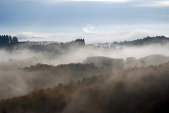 Dawn (Martina R) Tags: wood autumn sun sterreich fall nature fog landscape austria countryside nikon nebel herbst natur landschaft sonne wald steiermark styria eichberg sdsteiermark weinland leutschach southstyria trautenburg