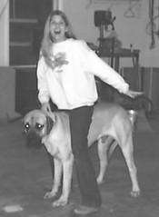 Excalibur & Jill (muslovedogs) Tags: dogs jill mastiff excalibur