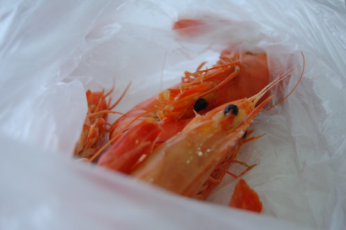 Huge Boiled Prawns