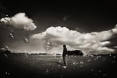 dream (zeissizm) Tags: sky bw cloud 20d monochrome eos wind bubble nara 1022mm ysplix