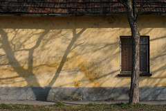 Esztergom (sonofsteppe) Tags: street old roof shadow house inspiration building tree art window horizontal wall facade tile creativity 50mm countryside daylight hungary exterior outdoor country explore faded simplicity imagination balance aged visual simple exploration bough esztergom wallscape sonofsteppe pusztafia optimemuseum optimegallery egom haphazartshapesshadows haphazarturbannature urbanlifeoftrees