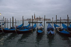 Venice 0300