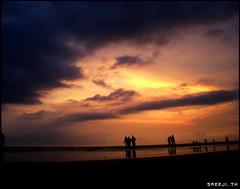 evening (sreeji..) Tags: sky net beach photography evening photo photos sony kerala dsc payyambalam h7 sreejith kannur inapp wwwsreejicom thaliparamba  sreejinet kenoth