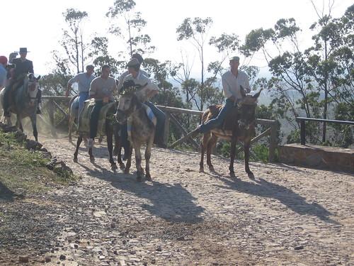 El camino en burro